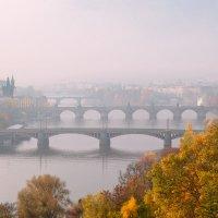 Пражские мосты туманным, осенним утром :: Valeria Ashhab