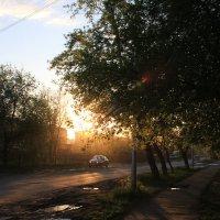 Чудесная прогулка :: Илья Абакумов
