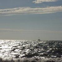 Черное море :: Vera Ko