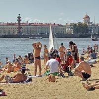 в Питере лето..... :: Владимир Матва