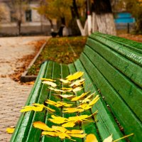 Осень в городском саду. :: Николай Симусёв