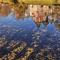 Осенняя листва :: Вячеслав Касаткин