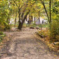 Осень во дворе :: Александр Скамо