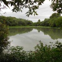 Озеро :: Валерия Кулакова