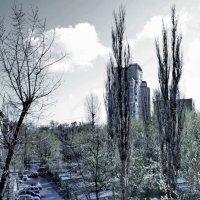 из окна :: Таня Миронова