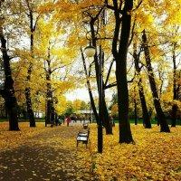 Осень.. :: Карина Бетрозова