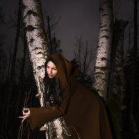 На той стороне леса :: Михаил Андреев