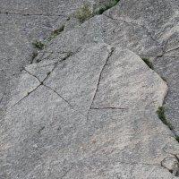 буквы природного происхождения высота 1.5м :: lev