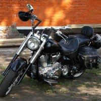 Harley Davidson :: Яков Реймер