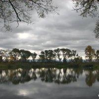 И у пруда - деревья с потемневшей листвой :: Юрий
