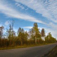Пути-дороги... :: Юрий