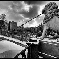 Львиный мост :: ник. петрович земцов