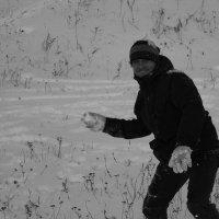 Зима :: Анна Луговая