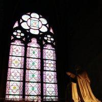 Notre Dame de Paris :: Лилия Сашина