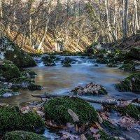 река в Большом каньоне :: Sergey Bagach