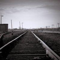 Дорога в светлое будущее :: Сергей Бутусов