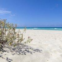 Пустынный пляж Варадеро :: Алексей Соминский