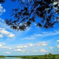 Лето,небо ,облака,сосны,река, что еще надо ..?! :: Владимир Михайлович Дадочкин