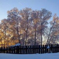 С прошлой зимы :: Андрей Махиня