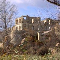 Замок Трубецкого 19 век :: Алексей Климов