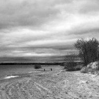 На закате дня. :: Валерий Молоток