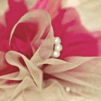 После свадьбы :: Krisstina Krisstina