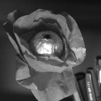Цветок :: Александра Синяева