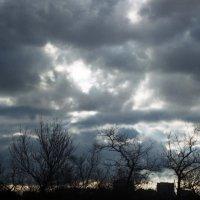 Облака - попытка первая :: Сурикат Сусликов