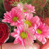 цветы :: юлия Силина
