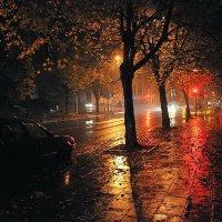 Ноябрь дождливый :: Георгий Столяров