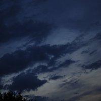 Мазки красок неба высоко над нами :: Ольга Гукова
