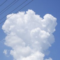 Полнота небесного рисунка :: Ольга Гукова