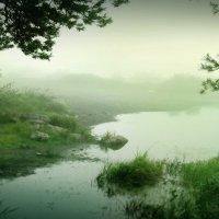 В туман :: Мария Каюмова