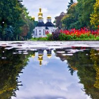 Осень, лужа... :: Александр Крупский