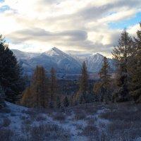 первый снег в горах. :: Инна Кравченко