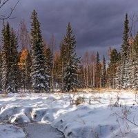 Первый Снег :: Николай Андреев