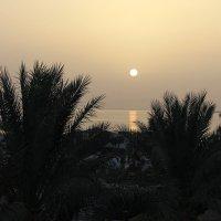Восход солнца :: Елена Горбова
