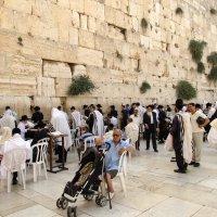 Израиль :: Максимилиан Штейн-Цвергбаум