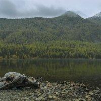 Мультинское озеро :: Альберт Беляев