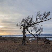 Короткое путешествие по Байкалу в пасмурную погоду***** :: Павел Федоров