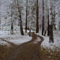 Первый снег... :: игорь козельцев