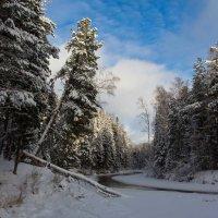 Тёплый ноябрь 13 года :: Сергей