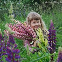 Фея  заброшенного  сада :: Ирина Бажанская