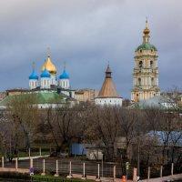 вид на новоспасский монастырь :: Александр Шурпаков