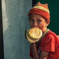 Голод не тетка... :: алексей афанасьев