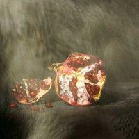 гранат и кот :: Ирина Горина
