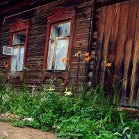 возле дома :: ольга хадыкина