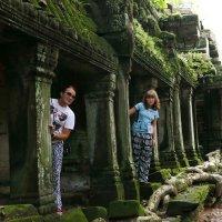 Храм Та Пром. Камбоджа. :: Инна Кравченко