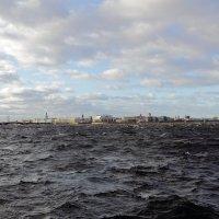 Санкт-Петербург, вид на стрелку Васильевского острова :: Михаил Лесин