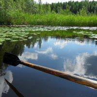 *в реку смотрятся облака...* :: Ирина Л